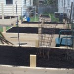 The finished raised beds.