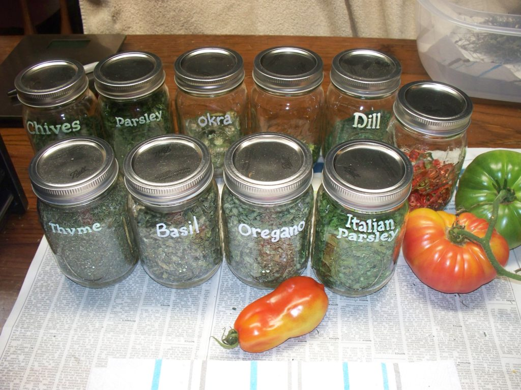 Dried herbs stored in pint jars.